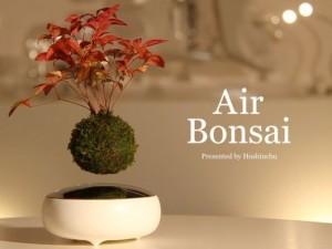 Air Bonsai(エア盆栽)